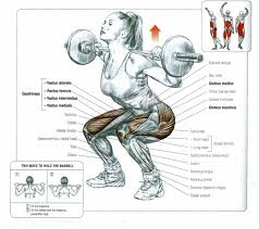 Squat  Deep, Heavy andfrequently