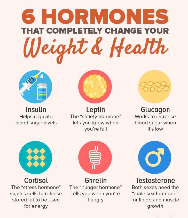 6-hormones- weight