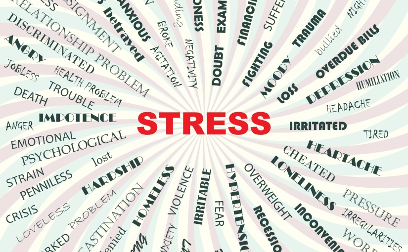 Where are you on the stress scale?